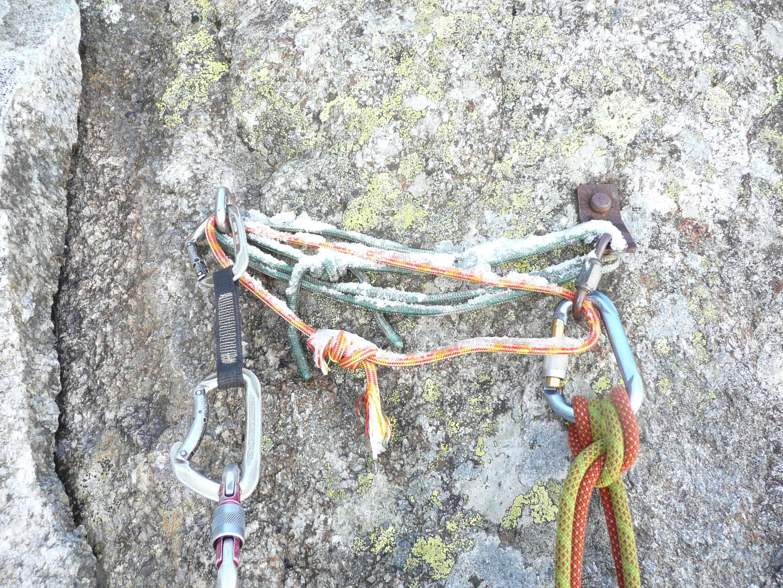 Lépidoptéres an der Aiguille du Peigne